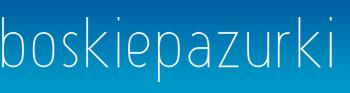 Boskiepazurki.pl - sklep dla wizażystek i stylistek